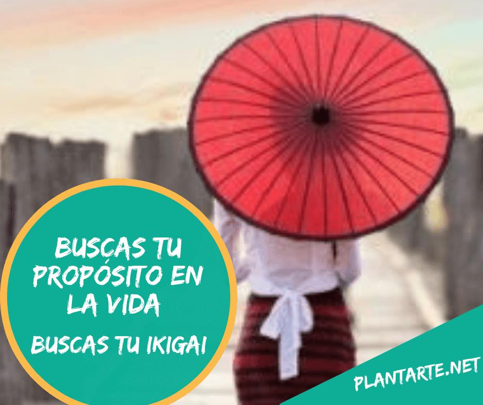 Que es ikigai